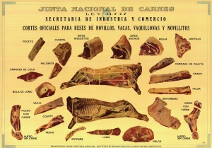 Meat cuts - Argentina - carne